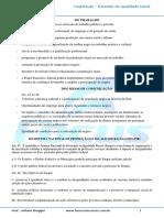 Estatuto_da_igualdade_racial_III_-_003017[1].pdf