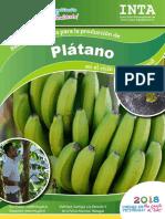 Recomendaciones produccion - Platano