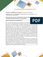 Deconstrucción.docx
