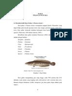BAB%2BII.pdf