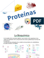 Resumen de Proteínas