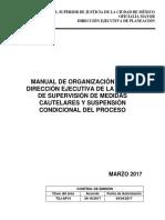 Manual de Organización de la UMECA.pdf