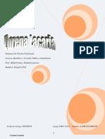 Seminario Modulo3-Entrega2-Lorena Lacaria 1