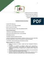 Planificación bimestre Enseñanza II y Residencia