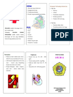 Anemia Leaflet - Copy (2)