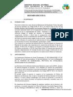 RESUMEN EJECUTIVO N°843 OCCACCAHUA.docx