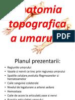 Anatomia Topografica a Umarului-converted