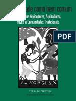 Biodiversidade-como-bem-comum.pdf