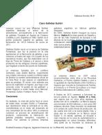 Caso_Galletas_Gullon.pdf