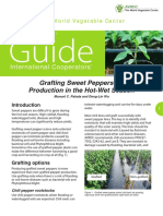 Grafting Sweet Pepper_web