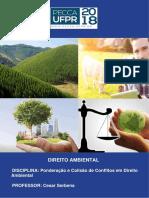 APOSTILA-Ponderação e Colisão de Conflitos em Direito Ambiental