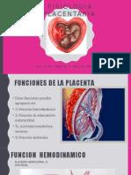 Fisiologia Placentaria.jpg
