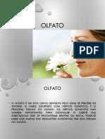 1520221576_3 olfato.pdf