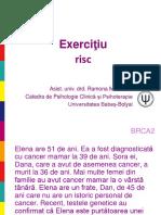 5. Exercitiu Risc