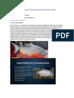 Clasificación Taxonomica Especies Piscicolas #2