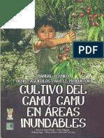 Pinedo Libro 2012