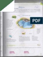 img401.pdf