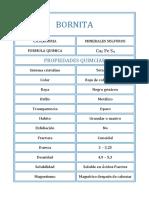 BORNITA.docx