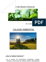 Gestión del Medio Ambiente 6.pptx