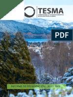 Presentacion de la Comision TESMA