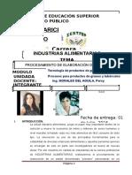 323751040-Informe-de-Pionono.pdf