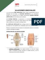 Resumen de a. Sinoviales Carlos Paladines