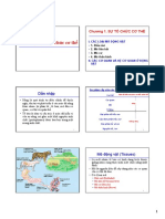 Chuong 1 Su to chuc co the 2 (1).pdf