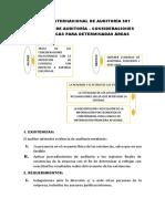 Norma Internacional de Auditoría 501