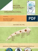 Pnl y Cultura Organizacional