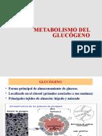 Metabolismo de Glucógeno