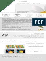 Brochure for Web