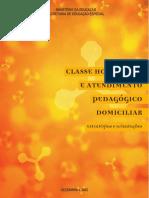 classe hospitalar e o atendimento pedagógico domiciliar.pdf
