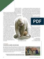 ALBINISMO.pdf