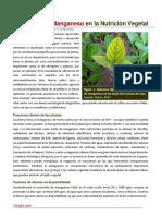 22. Nutricion Organica en El Cultivo de Arandano