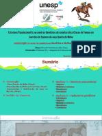 ESTRUTURA POPULACIONAL E PARÂMETROS GENÉTICOS DA CARACTERÍSTICA CLASSE DE TEMPO EM CORRIDAS DE EQUINOS DA RAÇA QUARTO DE MILHA