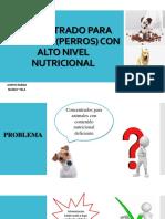 CONCENTRADO PARA ANIMALES (PERROS).pptx