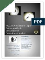 219771338 Informe Ecologia Bioindicadores