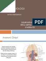 Anatomi Fisiologi Perkemihan New