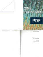 Youngblood, Gene - Cine Expandido.pdf