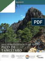 Área de Protección de Flora y Fauna Pico de Tancitaro