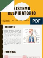 Sistema Respiratorio Dispos Expo-3