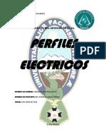 perfiles electrcos.docx