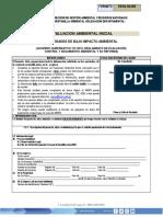 11195 EVALUACIÓN INICIAL IMPACTO AMBIENTAL.docx