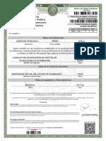 12000077_1918_cedprof.pdf CEDULA PROFESIONAL.pdf