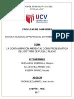 CONTAMINACION-AMBIENTAL-EN-EL-DISTRITO-PUEBLO-NUEVO.docx