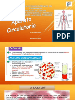 12. Anatomía Del Corazón