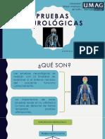 PRUEBAS-NEUROLÓGICAS