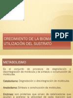 8. Biomasa y Sustrato