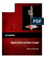 289423454-Registro-Sonico-Dipolar.pdf