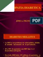 Nef. Diabetica